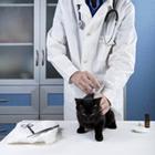 oedeme pulmonaire Mutuelle santé animaux domestiques